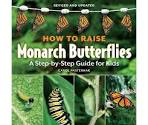 how-to-raise-monarch-butterflies